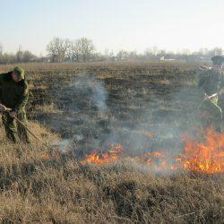 Неконтролируемые палы сухой травы представляют большую опасность!